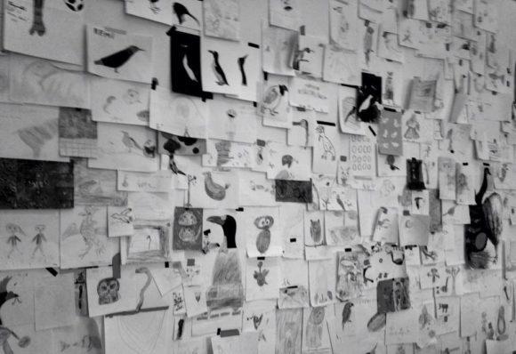 uccelli disegnati